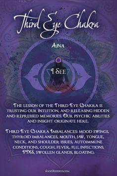 Chakra: Brow or Third Eye Chakra Chakras Reiki, Les Chakras, Third Eye, Chakra Balancing Meditation, 3rd Eye Chakra, Throat Chakra, Thyroid Imbalance, Chakra Alignment, Chakra Affirmations