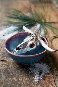 Bison Skull Ornament - Urban Outfitters