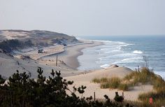 Delaware's Cape Henlopen state park is a magnificent area to relax and enjoy the splendor of untouched nature. Book a Rehoboth vacation rental to get in on all the action...or relaxation!