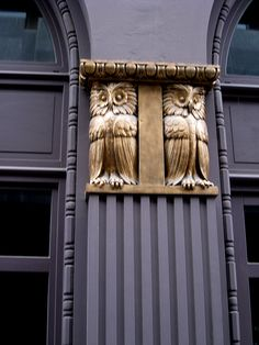 Brussels - love me some owls!