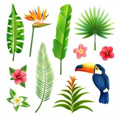 Buy Tropical Leaves Set by macrovector on GraphicRiver. Tropical gardens leaves and flower set with toucan bird isolated vector illustration. Editable EPS and Render in JPG .