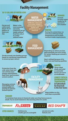 Learn the importance of grazing and how to manage grazing on your property through Zareba& educational infographic. Livestock Farming, Goat Farming, Raising Farm Animals, Farm Plans, Beef Cattle, Living Off The Land, Horse Barns, Horses, Backyard Farming