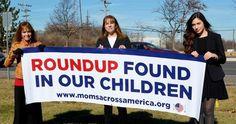 Anne Temple,Rachel Parentand Beth Savitt attended Monsanto's annual shareholder meeting to present reasons why Monsanto shouldmitigate risks fromRoundup