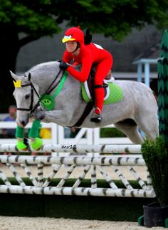 What a great horse Halloween costume: angry birds.  Of course, the goal is to keep the jumps up instead of knocking them down!  Love the creativity!