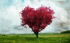 Love Heart Tree Shaped Wallpapers Resolution : Filesize : kB, Added on March Tagged : love heart Love Is All, Gods Love, Dame Nature, Heart In Nature, Nature Tree, Audre Lorde, Heart Tree, God's Heart, Red Tree
