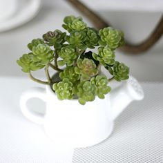 Cheap cactus artificial, Buy Quality pvc flowers directly from China artificial flowers succulents Suppliers: 5Pcs/lot microlandscape Cactus artificial fake pvc flower succulents for home garden party decoration green wall
