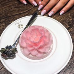 Stunning 3D Jelly Cake Looks Like Cherry Blossom Blooming on the Plate