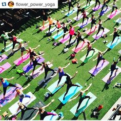 Love this yoga class shot! Reposting from @flower_power_yoga as we celebrate #NationalYogaMonth! (Check out our previous post for details on our current sale at Yogamatic!) #yoga #yogalife #yogaclass