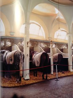 The Queen's horses- I love the standing stalls. Come in for feeding time, get out of the cold, or just tie while others are being worked. Easy clean up too! ;)