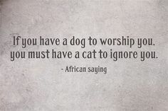 If you have a dog to worship you, you must have a cat to ignore you. - African