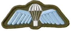Parachute Wings- All Corps