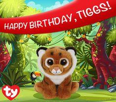 Happy birthday Tiggs