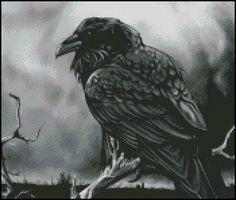 Just Raven (Shinysun)