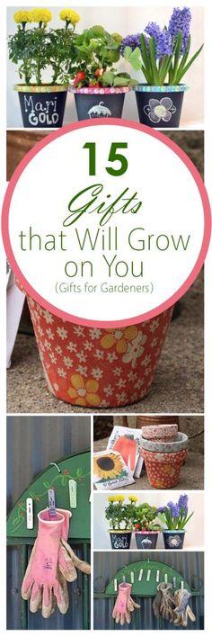Christmas Gardening Gift for Kid/'s in the Garden DIY Bird Food Cake GGDKG166