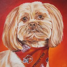 """Pet Portrait Painting Bell 12 x 12 Oil over Acrylic  The finished painting.  Head to my Etsy store to purchase your own before the Christmas rush. """"CameronDixonsArt"""" @ Etsy  http://ift.tt/2ewAXGe  #ny #nyc #bigapple #newyork #newyorknewyork #newyorkcity #manhatten #eastharlem #ilovenyc #photooftheday #igersofnyc #nylove #newyorkart #newyorklife #newyorkstyle #newyorkartist #canadianartist #newyork_instagram #petportrait #petpainting  #oilpainting #art #paint #artistforhire #commission…"""