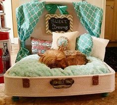 Diy dog bed suitcase puppys 21 Ideas for 2019 Cute Dog Beds, Puppy Beds, Diy Dog Bed, Pet Beds, Animal Room, Cute Suitcases, Dog Furniture, Painted Furniture, Dog Rooms