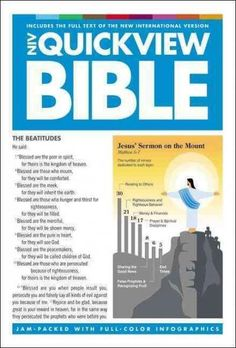 Quickview Bible: New International Version, Visual Snapshots of God's Word