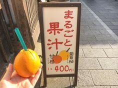 伊勢志摩に来たら誰もが必ず訪れるのが伊勢神宮でしょう。その門前町の様子を江戸時代の町並みで再現したおかげ横丁は、お伊勢参りの楽しみのひとつ。中でもSNSで話題になっているのがオレンジにストローをさした、その名も「まるごと果汁店」です。