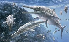 Fossil pigments show the true colors of ancient sea monsters   Ichthyosaur