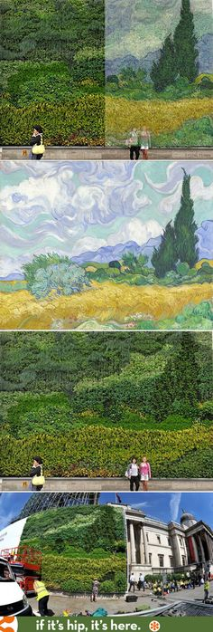 Van Gogh's Wheatfield with Cypresses is turned into a living painting made entirely of plants!