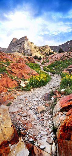 Trail to Sundial Peak in Utah.