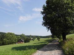Horní Albeřice.