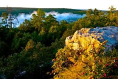 Robbers Cave State Park | TravelOK.com - Oklahoma's Official Travel & Tourism Site