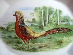 OLD 1924 Pink Edge Pheasant Forest Deep Platter Center www.DecorativeDishes.net