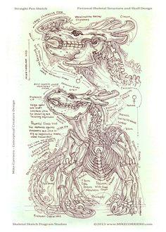 Komodo Herbivore Skeletal Diagram by MIKECORRIERO.deviantart.com on @deviantART