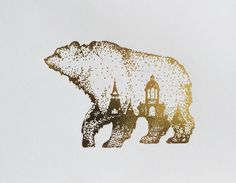 Dapper Bear - The Official Baylor Plaid - Stationary