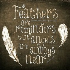 BIRDS of a FEATHER: Angels together. When you find a feather say a little prayer of thanks. LLC / brother Phil promised to send feathers for comfort / and so he does / Thank you The Words, Feather Quotes, Quotes About Feathers, Quotes About Birds, Dragonfly Quotes, Quotes To Live By, Me Quotes, Qoutes, Logan Quotes