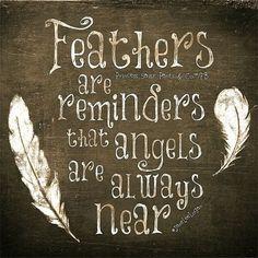 tender mercies: feathers