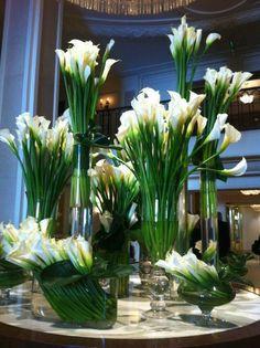 Calla Lilies architecturally arranged.