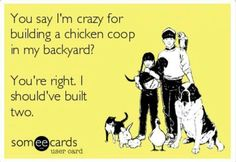 Carolina Coops offers the country's best selection of superior-grade chicken coops and accessories for sale. All chicken coops are handcrafted with premium materials and are prefabricated or custom designed and built to your own specifications. Chicken Life, Chicken Humor, Chicken Eggs, Chicken Coops, Chicken Houses, Funny Chicken, Chicken Feed, Raising Backyard Chickens, Keeping Chickens