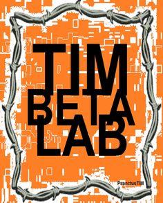 TIMbetaLab