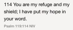 Psalm 119:114 (NIV)