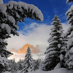 Winter in Colorado....
