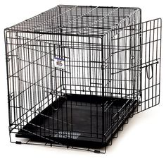 Little Giant Pet Lodge Medium Double Door Wire Pet Crate -- More info could be found at the image url. (This is an affiliate link and I receive a commission for the sales)