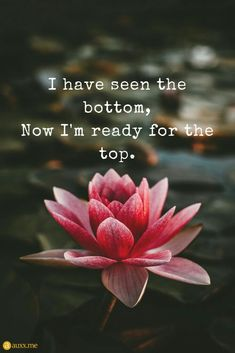 I Have Seen The Bottom Now Im Ready For The Top I have seen the bottom Now I'm ready for the top. The post I Have Seen The Bottom Now Im Ready For The Top appeared first on Easy flowers. Now Quotes, Great Quotes, Quotes To Live By, Life Quotes, Positive Affirmations, Positive Quotes, Motivational Quotes, Inspirational Quotes, Flower Quotes