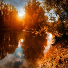 Autumn-river-forest-yellow-leaves-fantastic-nice-sunrise_large