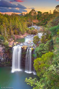 Waterfall at Sunset - Dangar Falls, Dorrigo, Australia #Photography #Beautiful #Places