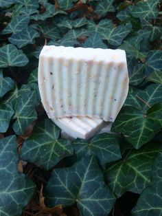 Organic Lavender & Oatmeal Soap   Made with Organic Rolled Oats, Fresh Lavender Blossoms, Shea Butter, Mango Butter, Coconut Oil and a little bit of love  https://www.etsy.com/listing/264950256/organic-lavender-oatmeal-soap #oatmealsoap #organicsoap #organic #skincare #lavender #organicskincare #lavendersoap #lavenderoatmeal #sheabutter #sheamoisture #organiclife #etsyshop #etsy #goodkitty #goodkittynaturals #lovewhatyoudo #organicgoddess #glowon #skinlove #healthyglow #coconutoil…