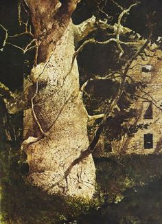Turner's Mill, 1973 by Andrew Wyeth Andrew Wyeth Paintings, Jamie Wyeth, Bunny Painting, American Impressionism, Forest Illustration, Abstract Nature, Traditional Paintings, Watercolor Artists, Will Turner