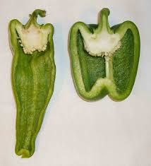 Peppers cross section Fruit And Veg, Fruits And Vegetables, Nice Biscuits, Fruit Photography, Photography Ideas, Fruit Creations, Natural Form Art, Cross Section, Pepper Seeds