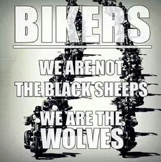 Motorcycle Memes, Biker Quotes, or Rules of the Road - they are what they are. A Biker's way of life. Triumph Motorcycles, Harley Davidson Motorcycles, Harley Bikes, Custom Motorcycles, Custom Bikes, Bike Quotes, Motorcycle Quotes, Motocross Quotes, Girl Motorcycle