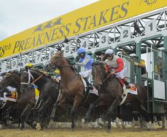 The nine horses in the 138th Preakness at Pimlico Race Course break out of the starting gate.