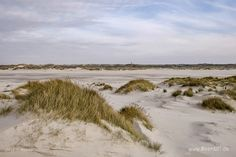 Amrum – Kunst am Kniep // #Nordsee #Amrum #Nordseeinsel #Nordfriesland #SH #Strand #MeerART / gepinnt von www.MeerART.de