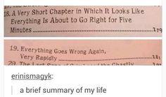 A brief summary of my life lol