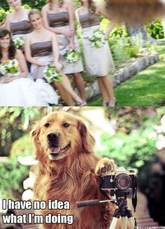 Bad, bad dog photographer!