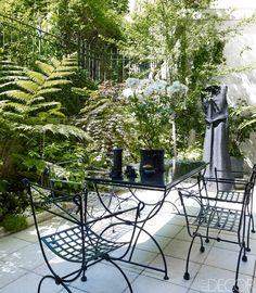 Fashion designer Andrew Gn's lush garden at his Paris apartment.